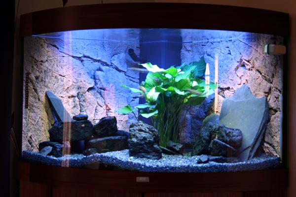 akvariesand