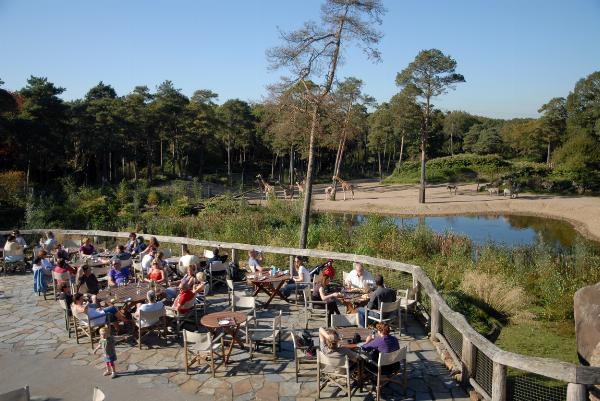 Burgers Zoo, Arnhem