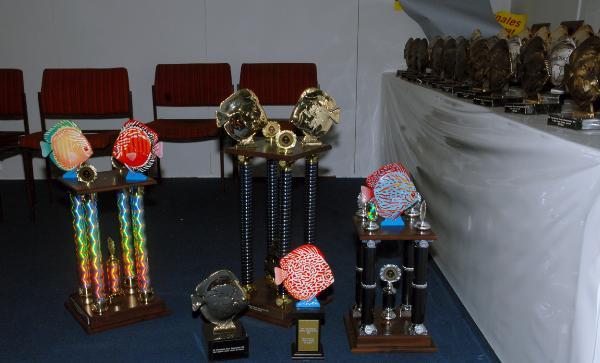 Diskuschampionat 2010, Priser
