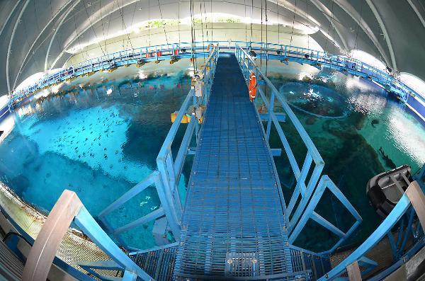 Aquarama.Farmtur. S.E.A. Marine Life