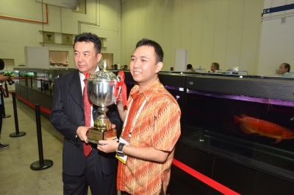 Fisktävling.Dragon Fish. Grand Champion.