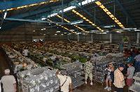 Farmtur_8_25_Qian_Hu_Corporation_DSC_8826.JPG