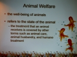 Seminarier. Svein Fosså. The Many Faces of Animal Rights.