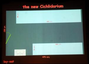 https://www.zoopet.com/bilder/data/697/medium/007_Heijns_My_cichlidarium_0226.jpg